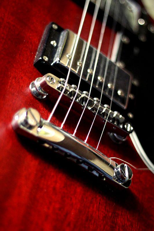 Fett Gibson SG Alder